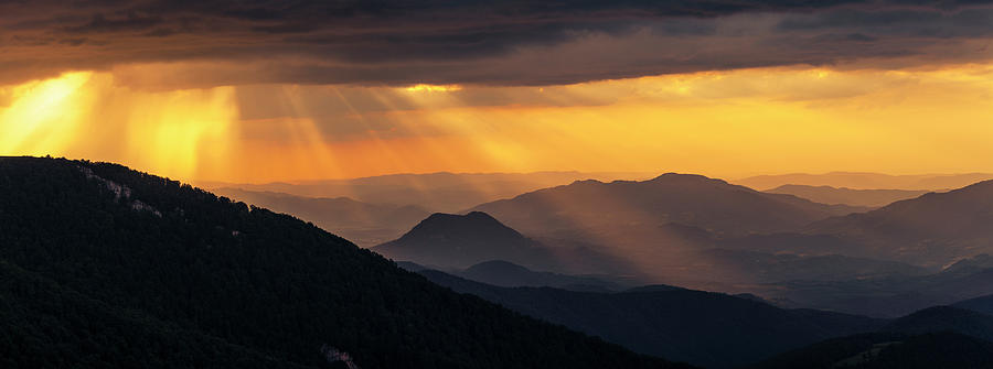 Golden Rain by Evgeni Dinev