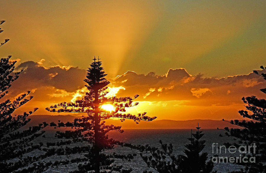 Golden Rays by Trudee Hunter