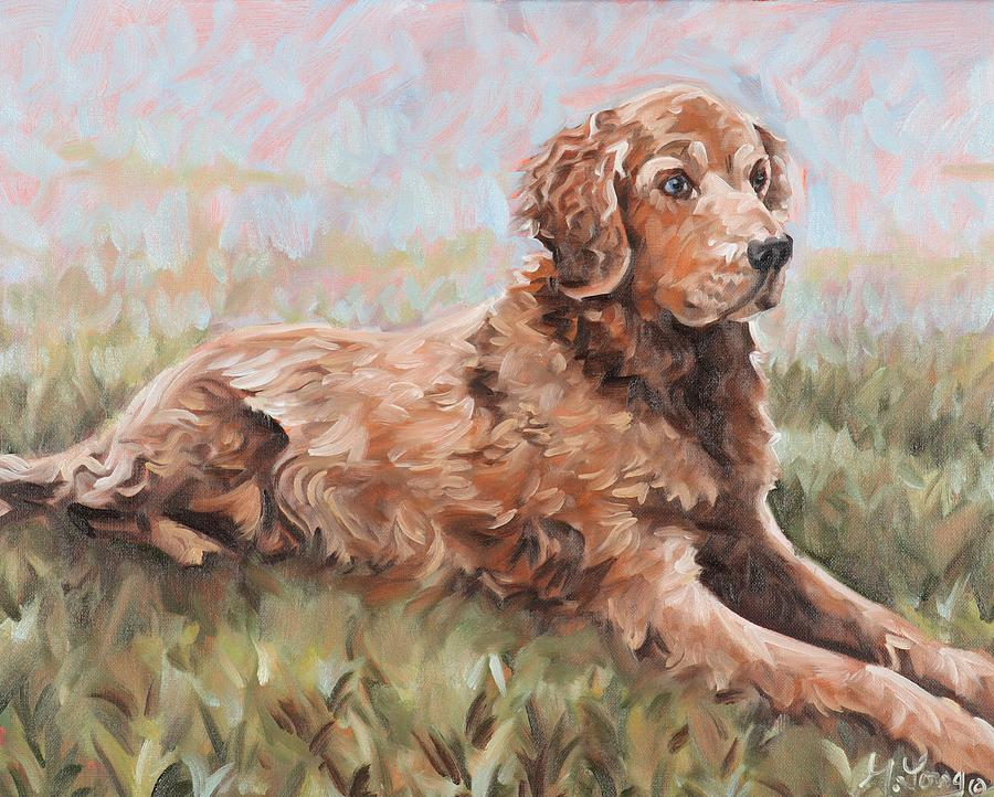 Golden Retriever by Gary M Long