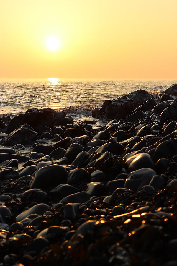 Golden Sunrise by Rachel Maytum
