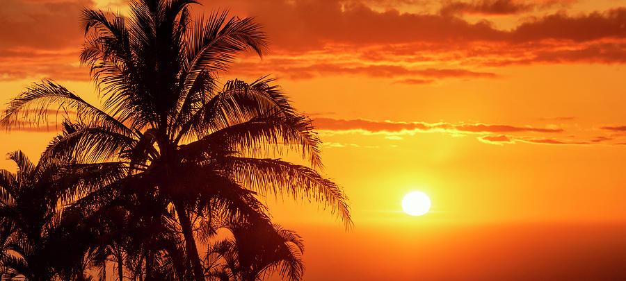Golden Sunset by Christopher Johnson