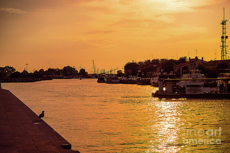 golden sunset in Lido port.Silhouette by Marina Usmanskaya