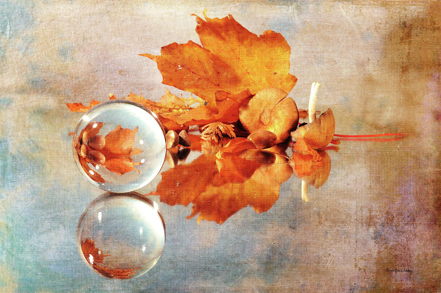 Golden Tones of Fall by Randi Grace Nilsberg