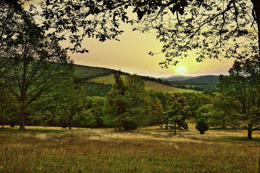 Golden Valley by Lj Lambert