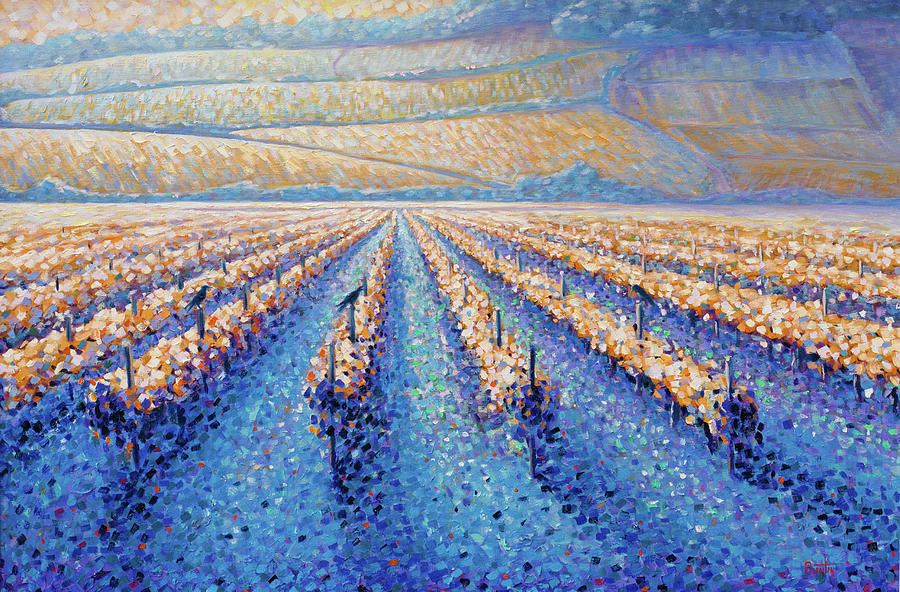 France Painting - Golden Vineyards by Rob Buntin