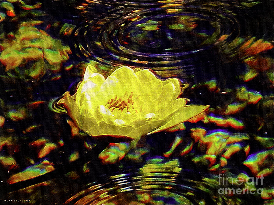 Golden Water Lily Pond Ripples Photograph