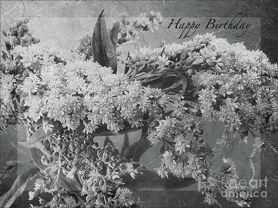 Goldenrod Happy Birthday Greeting Bw Photograph