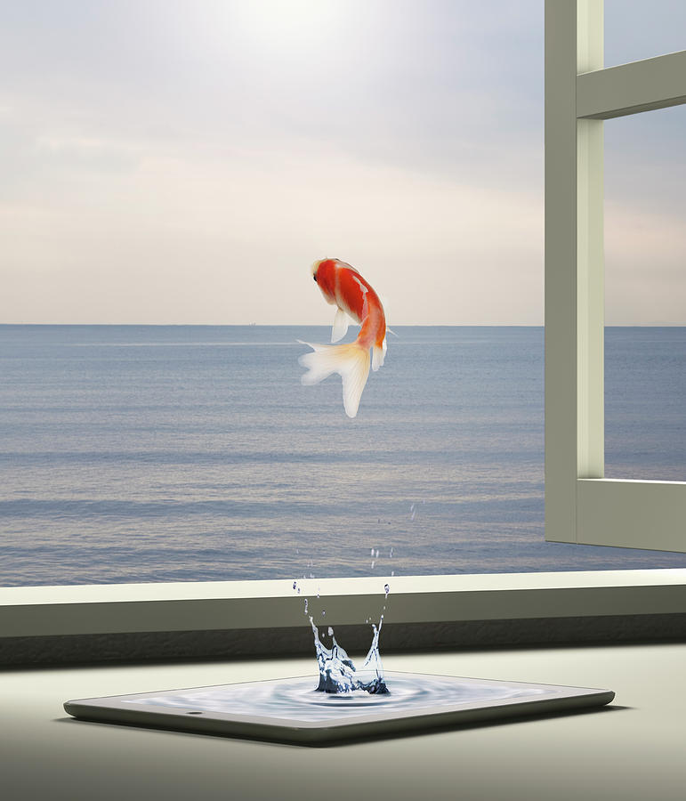Goldfish Is Escaping To Sea From Tablet Photograph by Hiroshi Watanabe