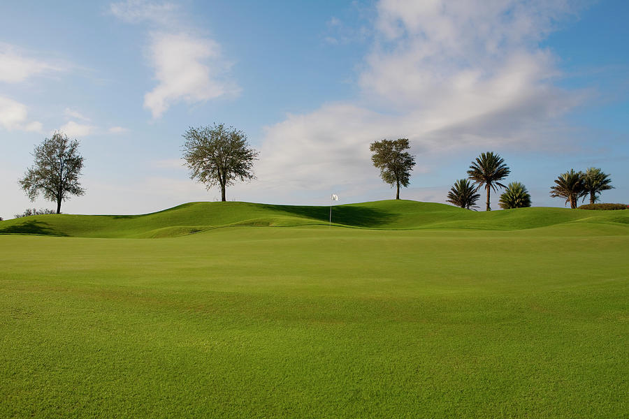Golf Course, Miami Beach, Florida, Usa Photograph by Glow Images, Inc