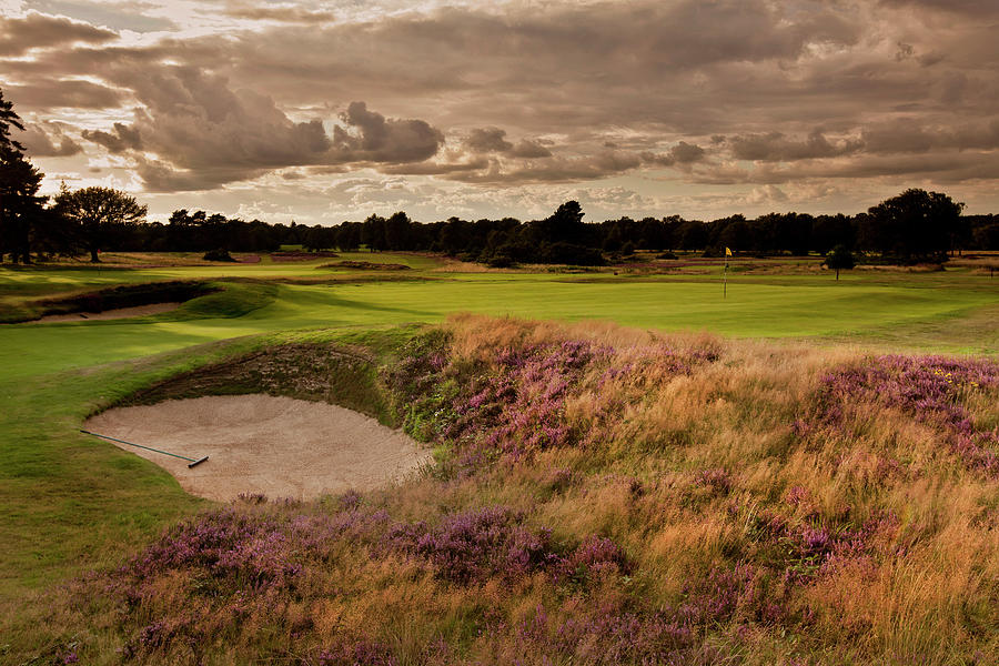 Golf  Course, Uk Photograph by Charles Briscoe-knight