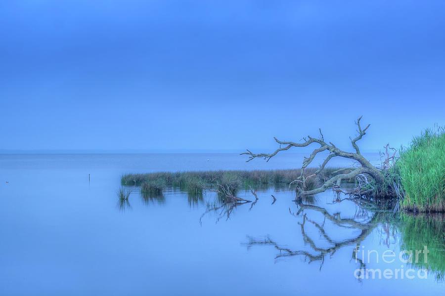 Shore Digital Art - Good Morning Sea by Randy Steele