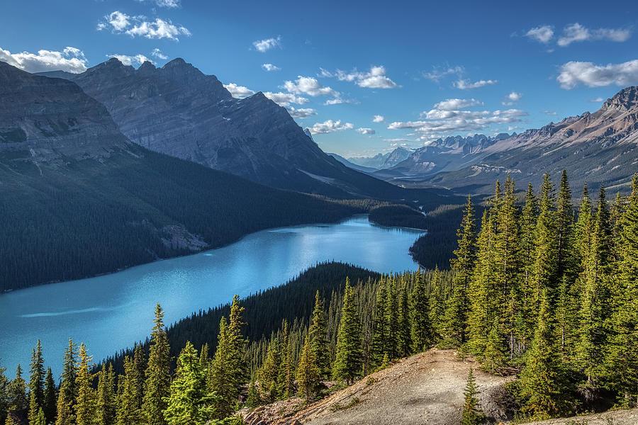 Gorgeous Peyto Lake by Andy Konieczny
