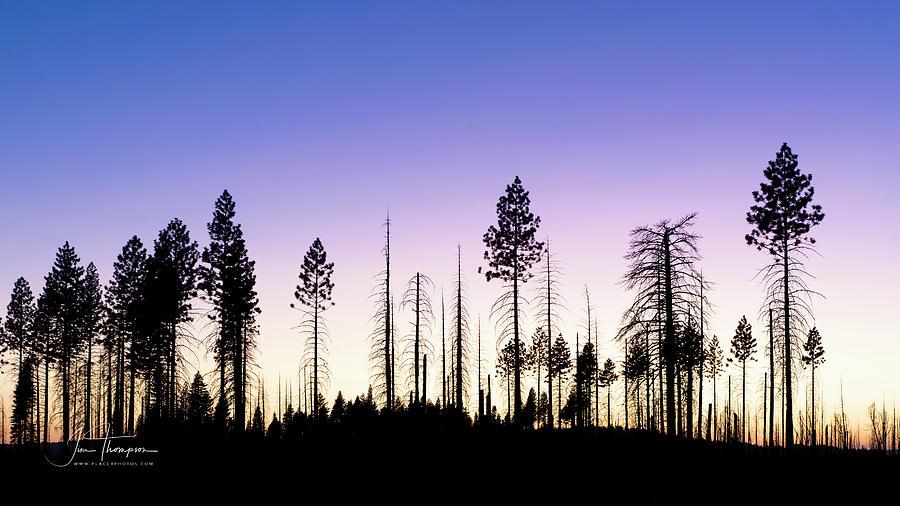 Landscapes Photograph - Gorgeous Sunset by Jim Thompson