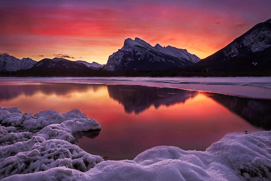Canadian Photograph - Gorgeous Winter Morning by Andy Hu