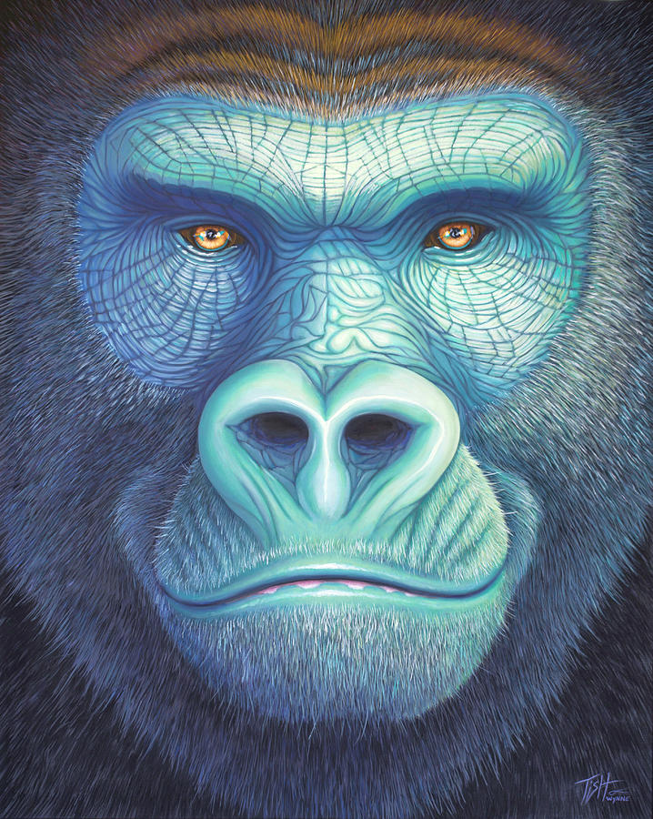Gorilla Face by Tish Wynne