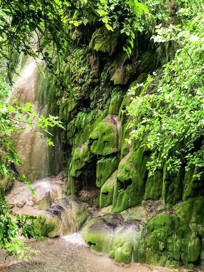 Gorman Falls by Kelly Thackeray