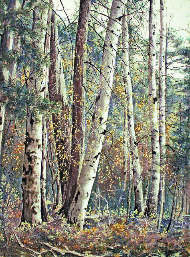 Trees Painting - Grace & Maturity by Carol J Rupp