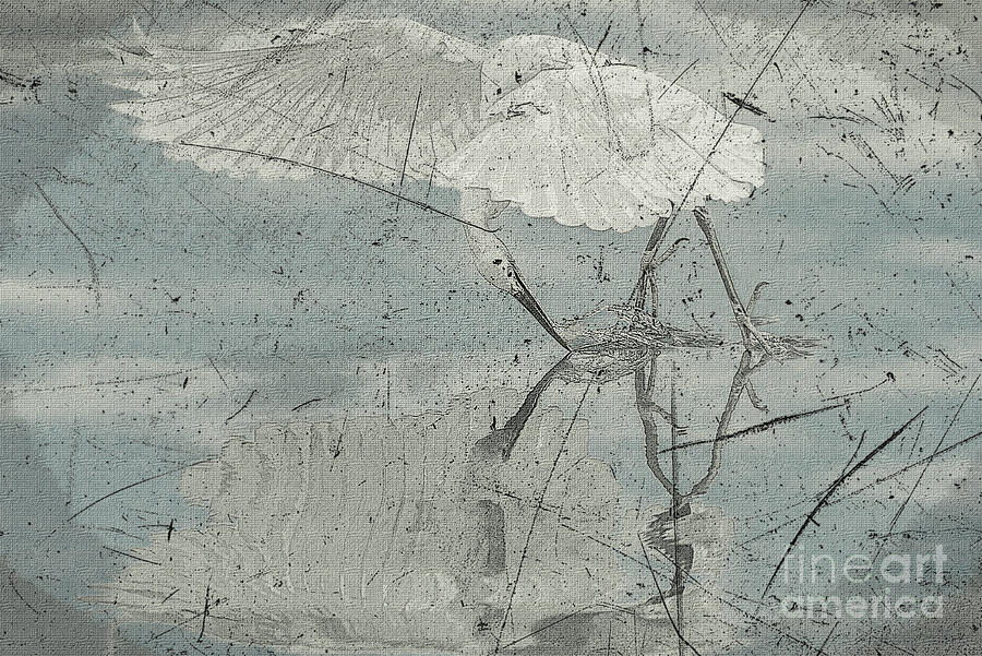 Bird Mixed Media - Graceful Catch In Subdued Hues by Banyan Ranch Studios