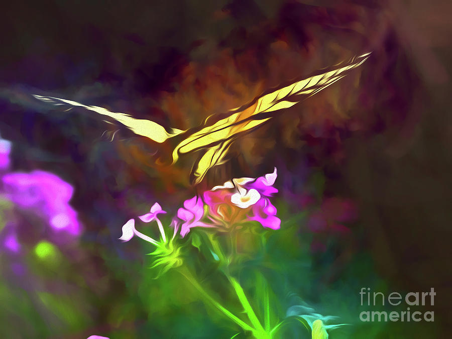 Graceful In Flight by Amy Dundon