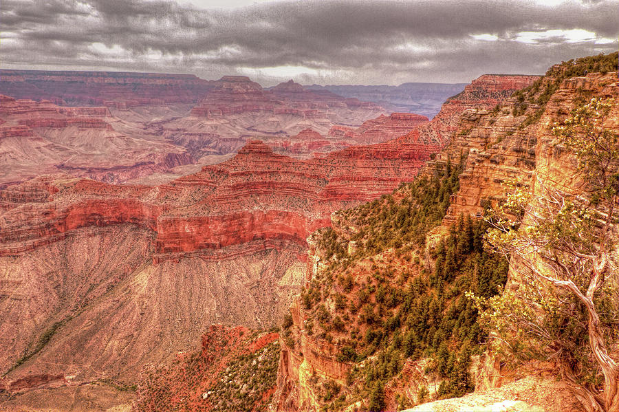 Grand Canyon, #1 by Dorothy Cunningham