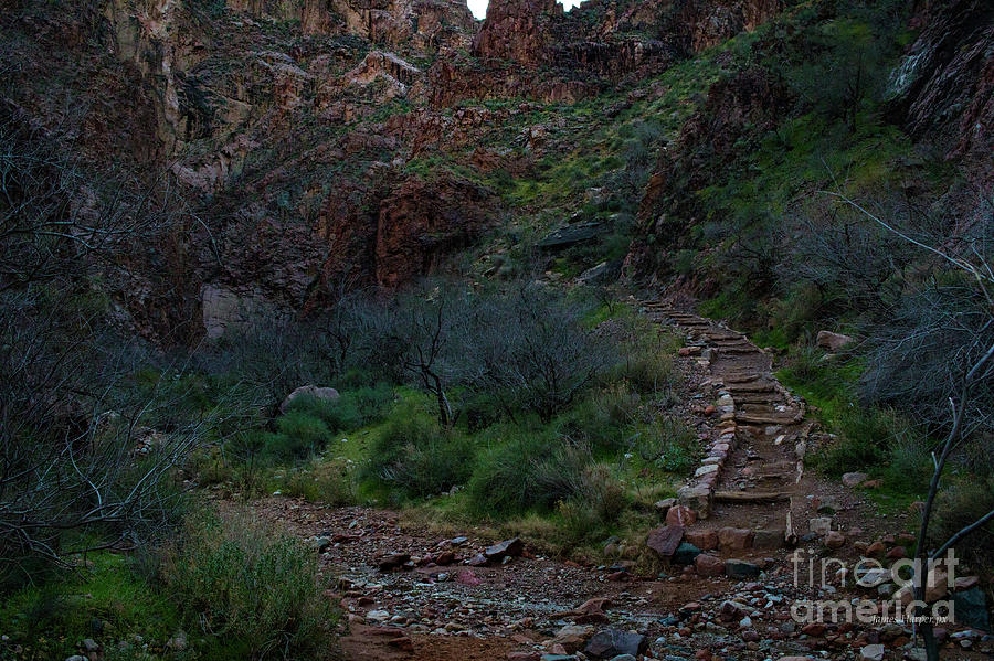Grand Canyon 6599 by James Harper