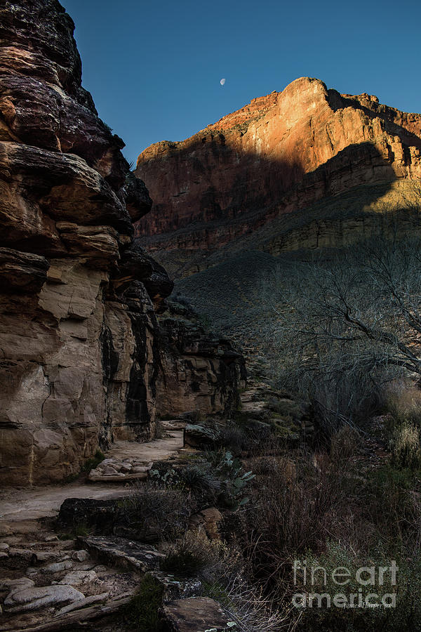 Grand Canyon 6631 by James Harper