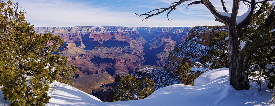 Grand Canyon and Snow Panorama 2 by Todd Bannor