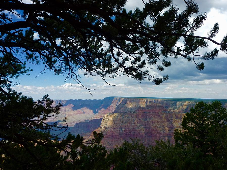 Grand Canyon In Frame by Louise Mingua