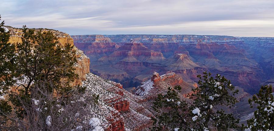 Grand Canyon Morning Panorama by Todd Bannor