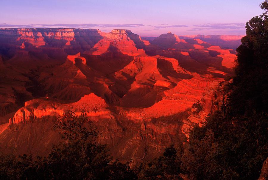 Grand Canyon Np, Az Photograph by Gary Conner