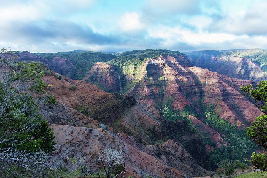 Grand Canyon of the Pacific by John and Nicolle Hearne