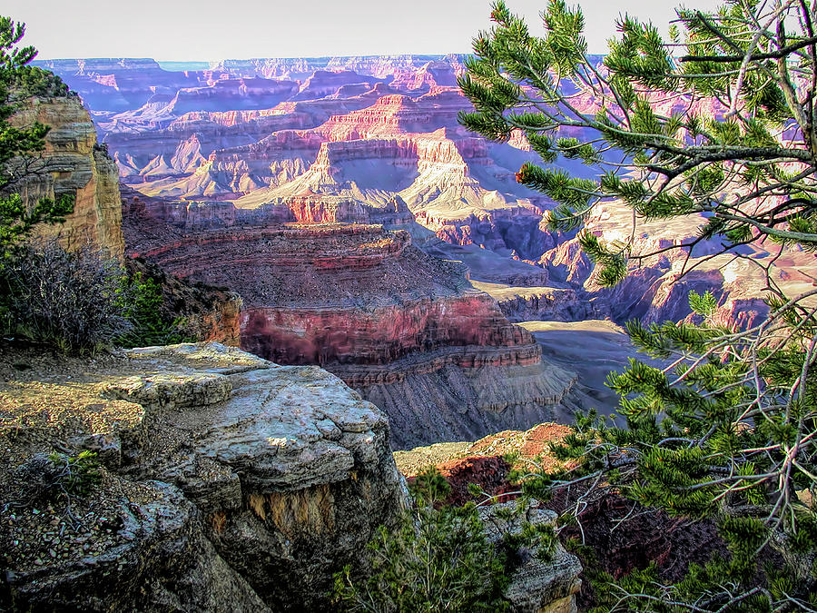 Grand Canyon Scene 5 by PAUL COCO