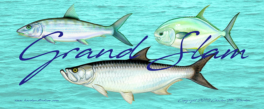 Grand Slam Tarpon Bonefish Permit Fishing by Charles Harden