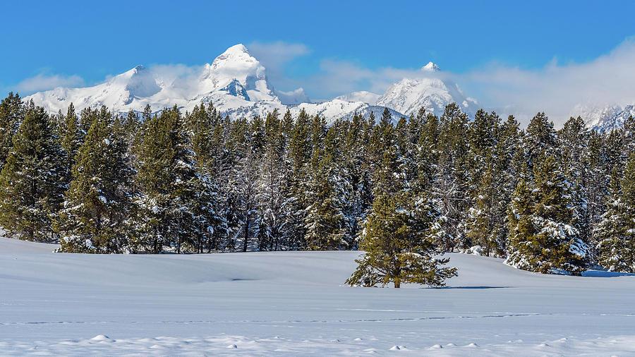 Grand Teton Winter Serenity by Yeates Photography