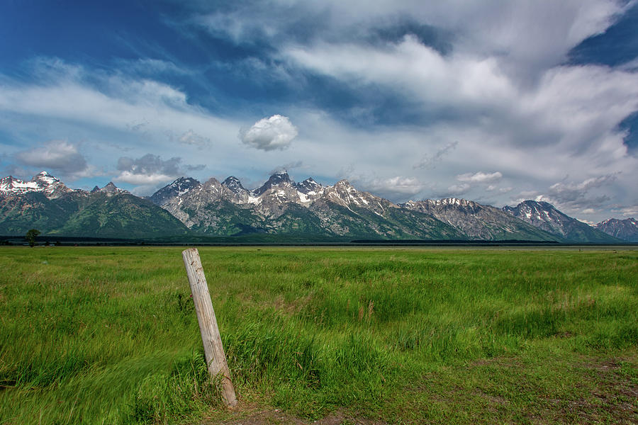 Grand Tetons from Mormon Row by Douglas Wielfaert