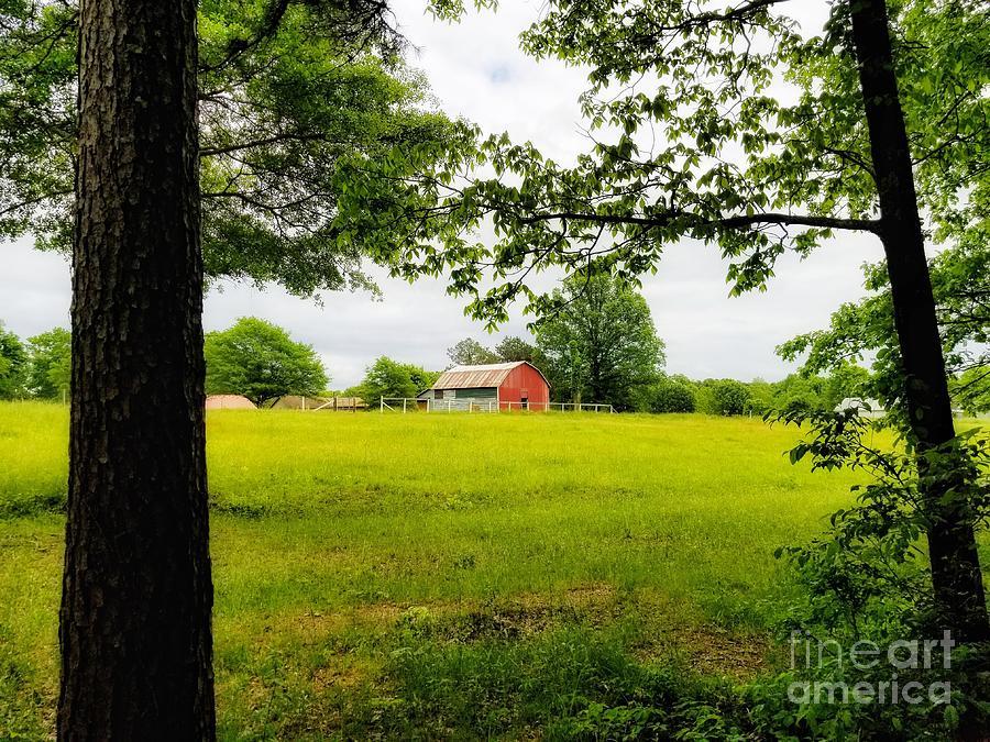 Grandaddy 's Barn by Rachel Hannah