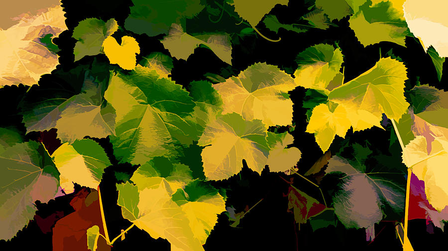 Grape Leaves As abstract by Cathy Anderson