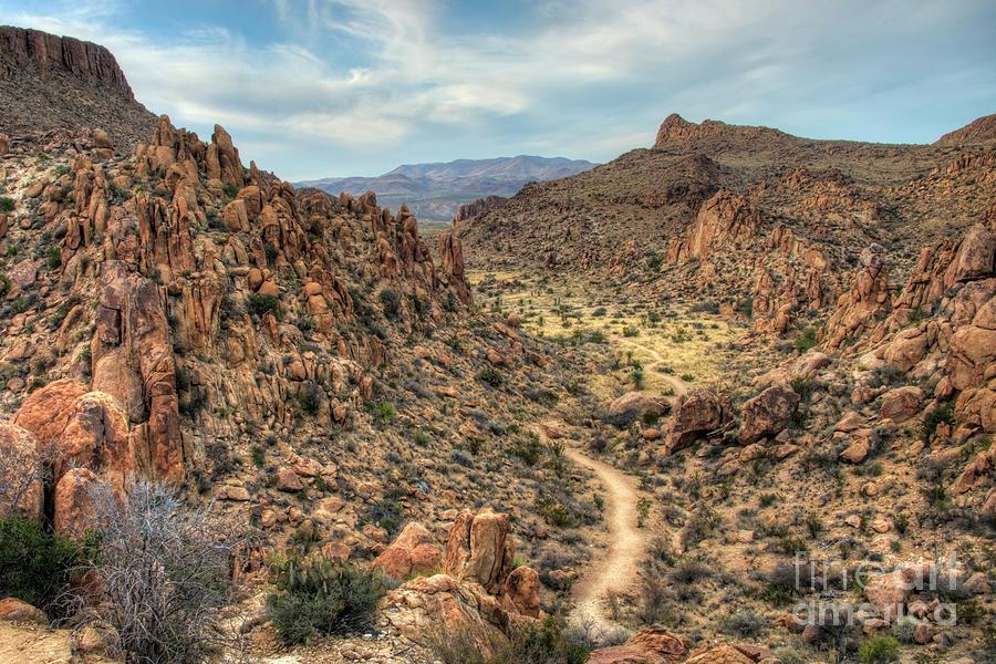 Texas Photograph - Grapevine Mountain Trail by Joe Sparks