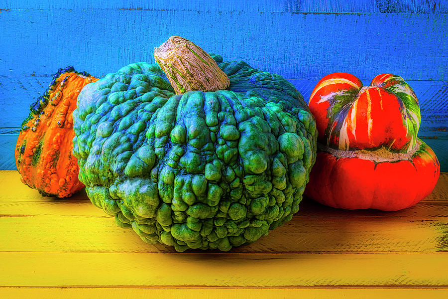 Three Photograph - Graphic Autumn Pumpkins And Gourds by Garry Gay