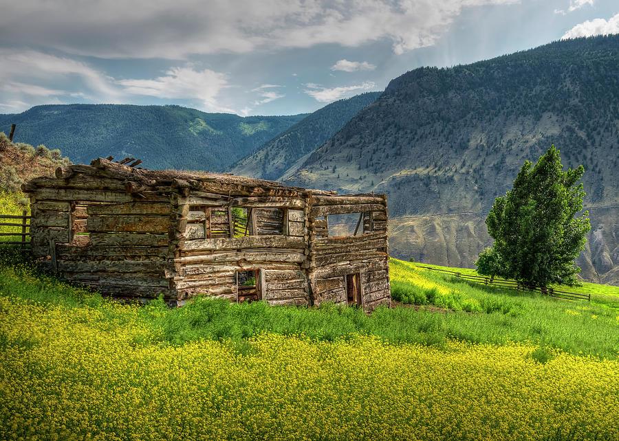 Grasslands Cabin by Doug Matthews