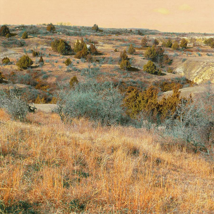 North Dakota Photograph - Grassy Ridge Reverie by Cris Fulton