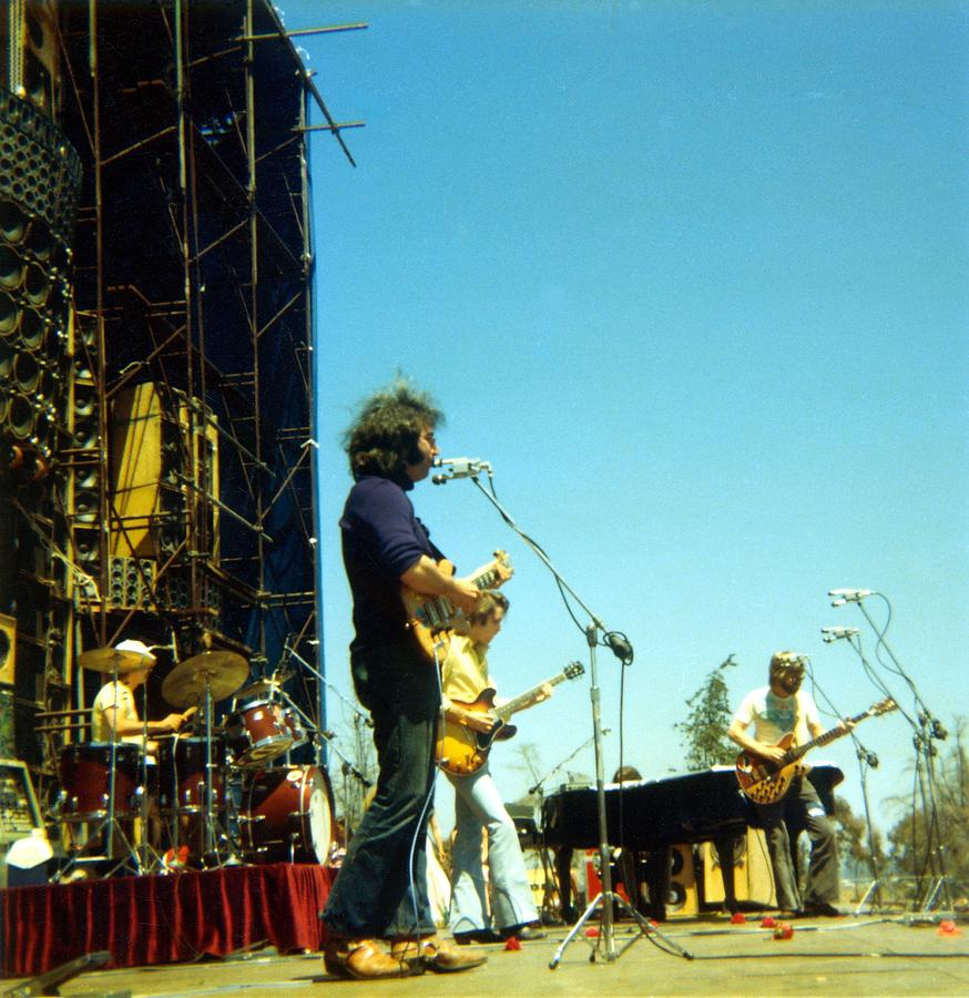 Grateful Dead Live Photograph by Ed Perlstein