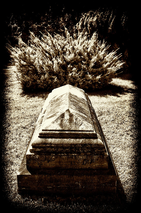 Grave / Bush by Paul W Faust - Impressions of Light