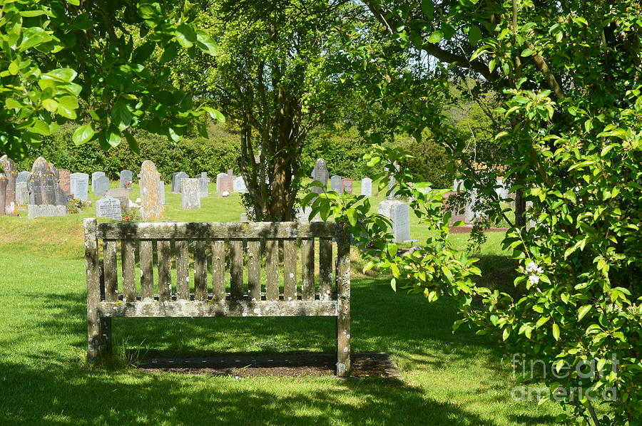 Graveyard Bench by Andy Thompson