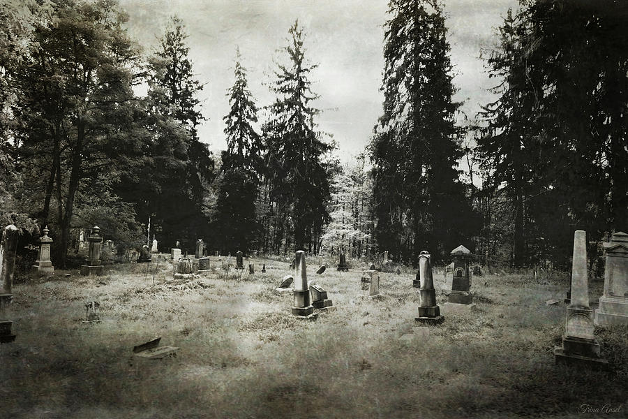 Graveyard in New York by Trina Ansel