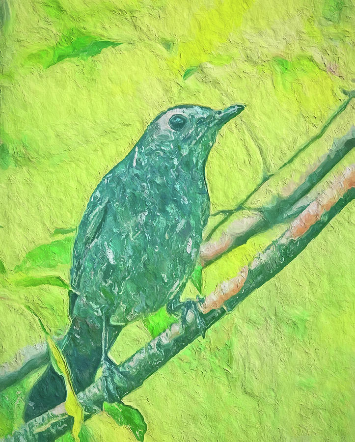 Gray Catbird On Green by Dan Sproul