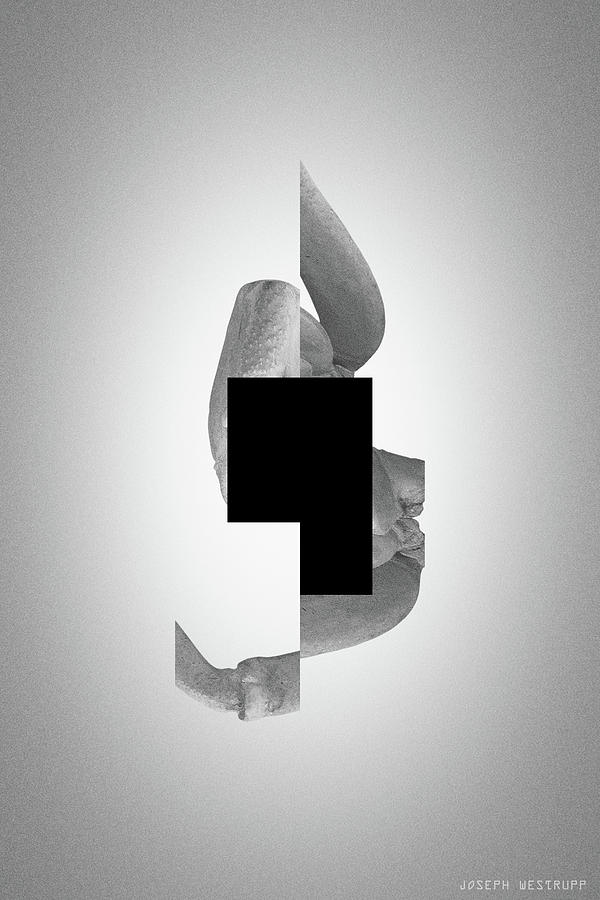 Gray Comma - Surreal Abstract Crab Shell With Square Shape by Joseph Westrupp