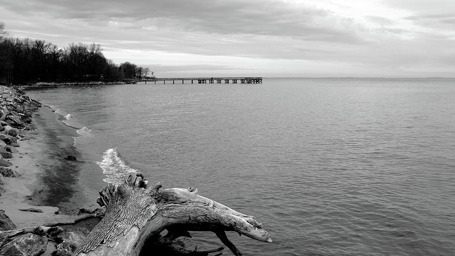 Gray Day on The Bay by Charles Kraus
