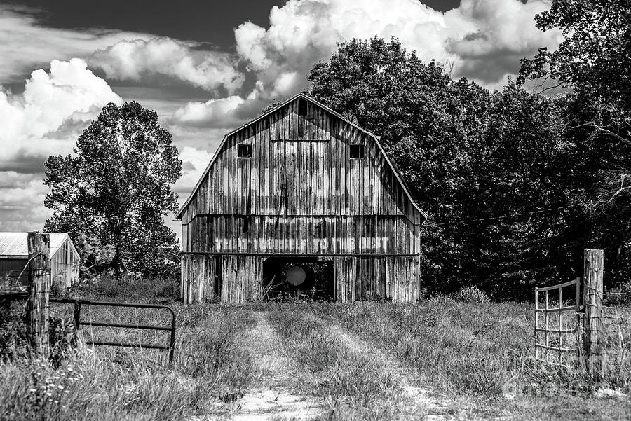 Gray Indiana Mail Pouch Barn - Black and White by Gary Whitton
