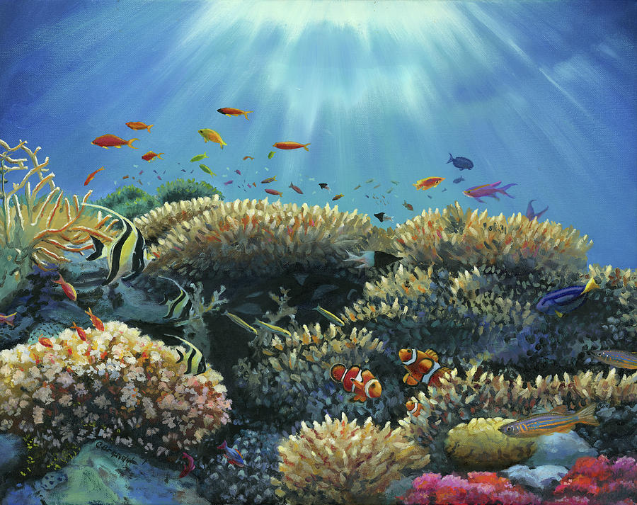Great Barrier Coral Reef by Cecilia Brendel